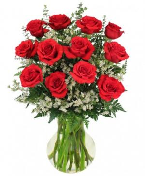 Red Roses and Wispy White Accent Flowers  in Mansfield, OH | Alta Florist Mansfield