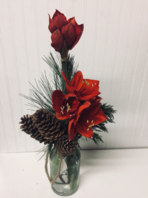 Red Simplicity  in Easton, MD | ROBINS NEST FLORAL AND GARDEN CENTER