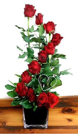 Red Staircase Roses