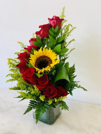 Red Sunshine Roses