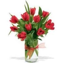 10 Red Tulip Arrangement