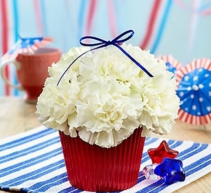 Red, White and Blooming Cupcake Arrangement