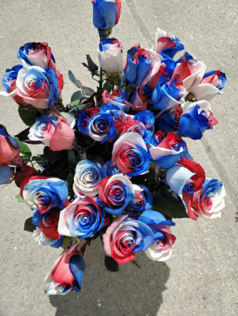 Red, White and Blue Roses Premium Long Stem Roses