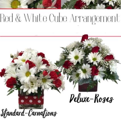 Red & White Cube-Designer's Choice