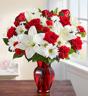 Red & White Delight™  in Valley City, OH | HILL HAVEN FLORIST & GREENHOUSE