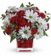 Red & White Delight Arrangement in cube