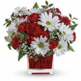 Red & White Delight Floral Bouquet