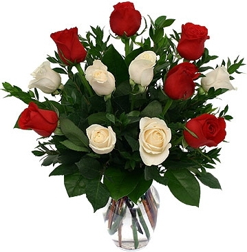 Red white roses classic arrangement in germantown md genes red white roses classic arrangement mightylinksfo