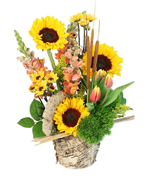 Reeds of Hope Flower Arrangement in Skowhegan, ME | SKOWHEGAN FLEURISTE & FORMALWEAR