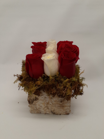 Refined Roses Valentines Day