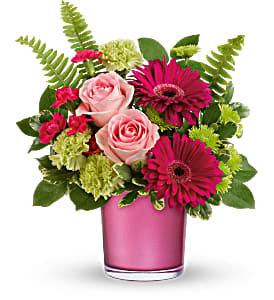 Regal Pink Ruby - 593 Arrangement
