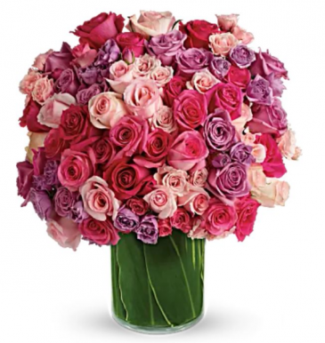 Reign of Roses Arrangement