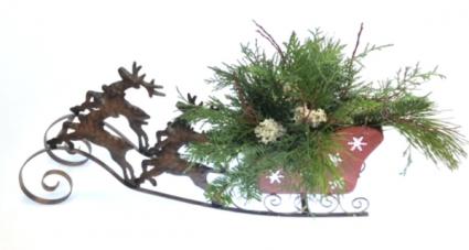 Reindeer Sleigh Arrangement