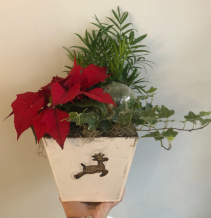 Reindeer Wooden Planter