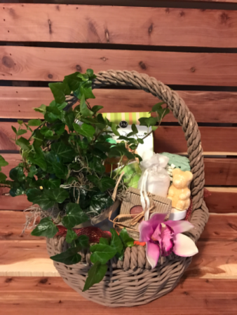 Relax with Nature  Plant and Gift Basket Combo