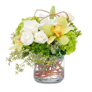 Renewed Promise Arrangement in Fort Smith, AR | EXPRESSIONS FLOWERS, LLC