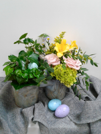 Robin's Caddy  Fresh&Plant Combo Serene Garden Collection