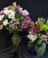 Designer's Choice Flowers  Designer Arrangement