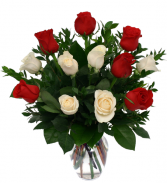 Romance Roses- short stems Roses