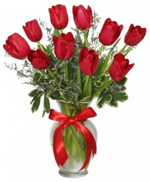Romantic Red Tulips Arrangement in Rowley, MA | COUNTRY GARDENS FLORIST