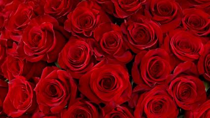 Romantic Valentine's Day Arrangement