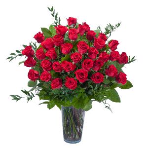 Room Full of Roses - 3 Dozen Roses Arrangement in Ann Arbor, MI   Chelsea Flower Shop