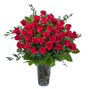 Room Full of Roses - 3 Dozen Roses Arrangement