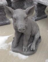 Rooting Pig~$65.00