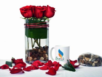 Rosas coquetas GEF009