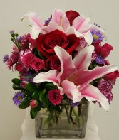 Rose and babyrose 17-01-25-11