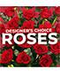 Rose Arrangement Designer's Choice