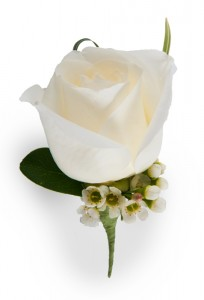 Rose Boutonniere White, Red, Pink, Yellow and Peach available  in Draper, UT | Draper FlowerPros
