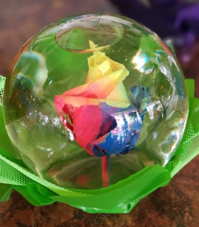 Rose Bubble Bowl Rainbow