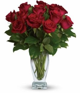 Rose Classique H652A