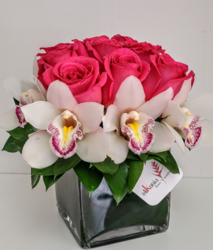 Rose Cymbidium Gift V21-814 Flower Arrangement in San Juan, PR | ELIKONIA FLOWERS