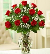 Rose Elegance 12, 18, or 24 Long Stem Blooms