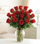 Rose Elegance All around