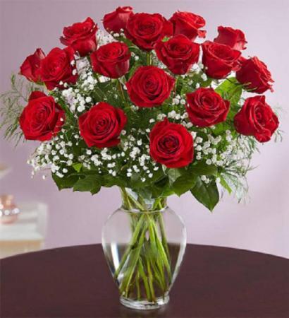 Rose Elegance Premium 18 Stems Red Roses Item #181737