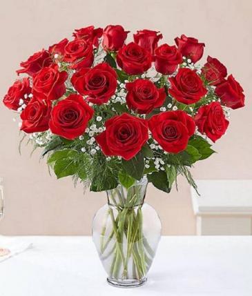 2 Dozen Long Stem Roses Your Color Choice