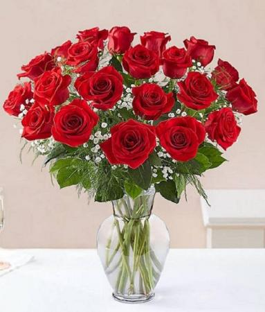 Rose Elegance Premium 2 Dozen Long Stem Red Roses item #161777