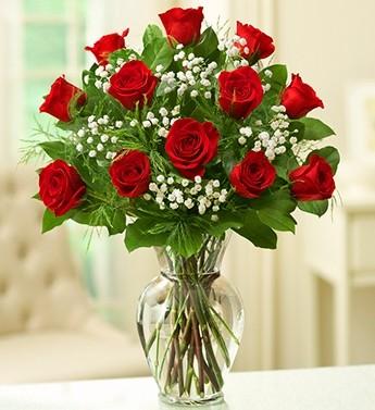 Rose Elegance Premium Long Stem Red Roses One Dozen