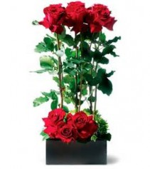 Rose Garden 1 Dozen Red Roses with Artistic Flair