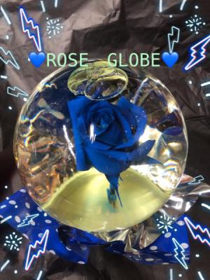 ROSE GLOBE.   in Ozone Park, NY | Heavenly Florist