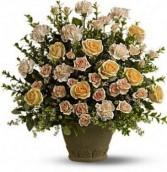 Rose Rememberence Funeral Arrangement