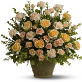 Rose Remembrance sku #T221-2A
