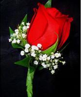 Rose Romance Boutonniere