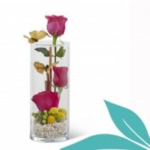 Rose Terrainium Rose