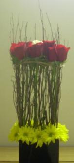 Architectural Roses Custom