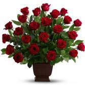 Rose Tribute sku #T224-1A