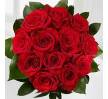Roses DOZ.RED ROSE BOUQ. $49.99 Premium $ 69.99